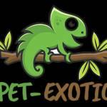 Pet-exotic. com Profile Picture